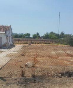 Bán đất xây nhà yến, biệt thự vườn, trồng nho xanh