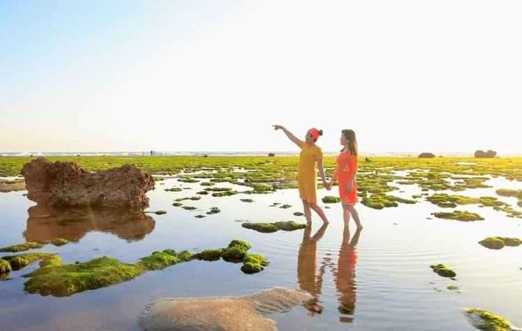 Bãi rong biển đẹp mắt tại Ninh Thuận
