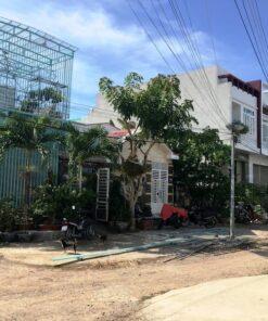 Nhà đất Phan Rang giá rẻ