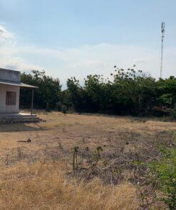 Bán 3ha đất trang trại xã phước trung mặt tiền tỉnh lộ 705