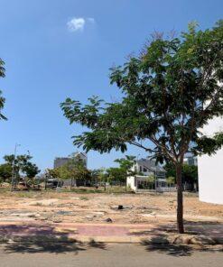 Bán đất nền biệt thự khu k1 phan rang